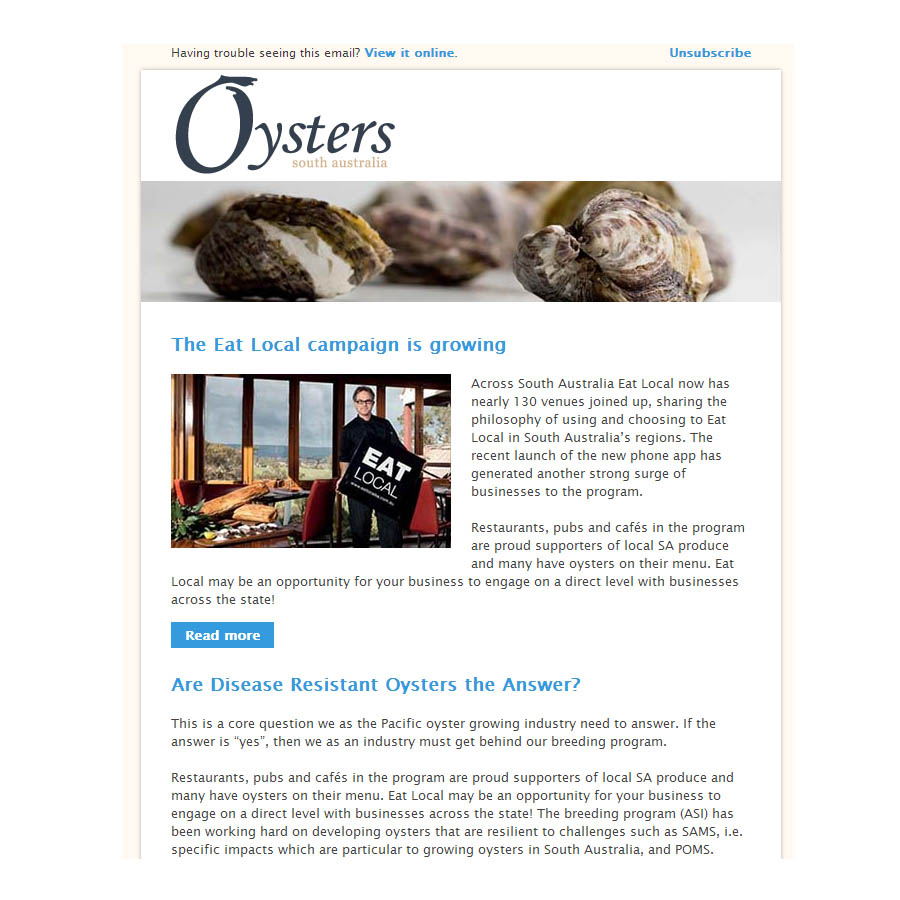 HTML email coded newsletter, Oysters SA, Adobe Business Catalyst