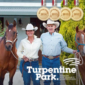 Turpentine Park Premium Performance Quarter Horses